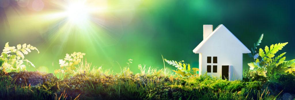 Classement Greenpeace 2019 : Mega obtient la mention acceptable