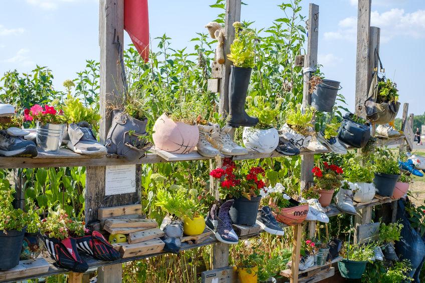 des chaussures utilisées comme pots de fleurs