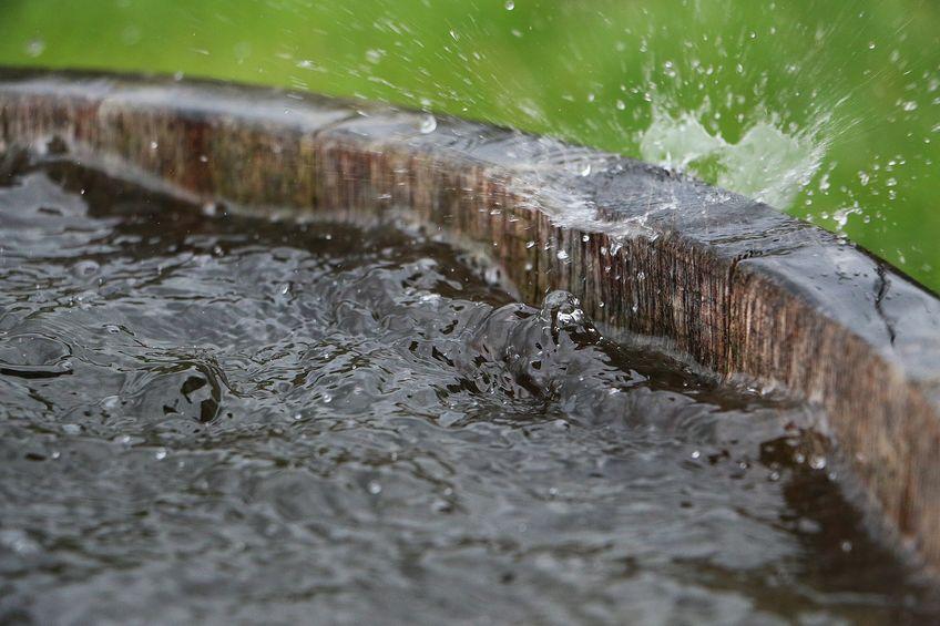 récupérer eau de pluie